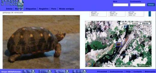Animageo, Fotos geolocalizadas de animales salvajes y domesticos