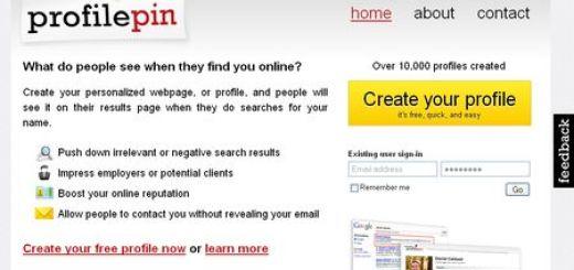 Profile Pin, Crea un completo perfil personal