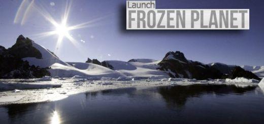 Frozen Planet, descubre el Ártico y la Antártida con este mapa interactivo