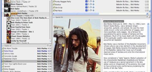 Jaangle, organizador multimedia y reproductor con licencia Open Source