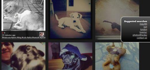 Search Instagram, potente buscador de imágenes en Instagram con stream en movimiento