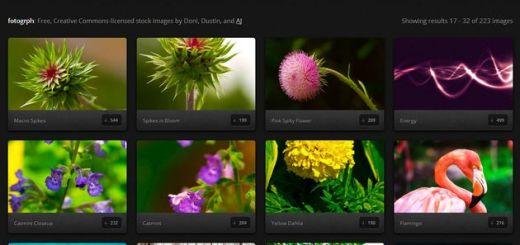 Fotogrph, colección de bellas fotografías Creative Commons para usar en nuestros proyectos
