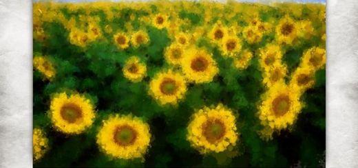 Lazy Paint: convierte cualquier imagen en una pintura con esta app para Windows 10