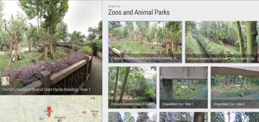 Google Street View ahora nos permite visitar diversos zoos del mundo