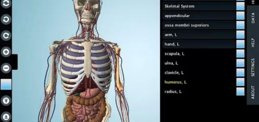 anatomia Archives - Soft & Apps