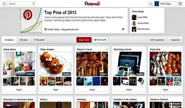 Top Pins 2013