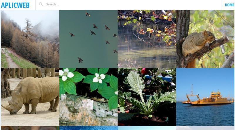 AplicWeb: gran colección de fotografías de dominio público