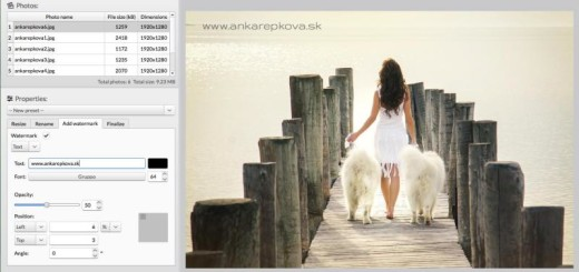 sPhoto: software gratis para editar lotes de imágenes