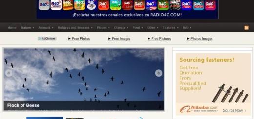 Photos Public Domain: descarga miles de fotografías gratuitas
