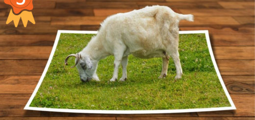 5 utilidades web para redimensionar imágenes y preservar su calidad