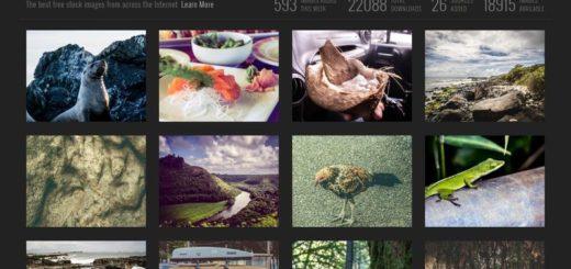Passel: miles de imágenes gratuitas, en alta calidad, para tus proyectos