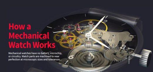 Cómo funcionan las cosas explicado con animaciones en 360 grados