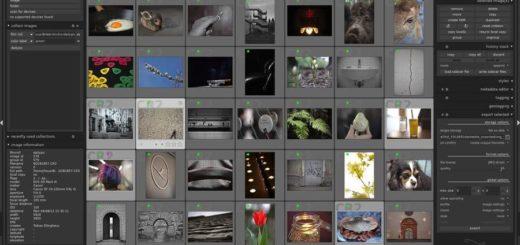 Darktable: impresionante software para edición fotográfica