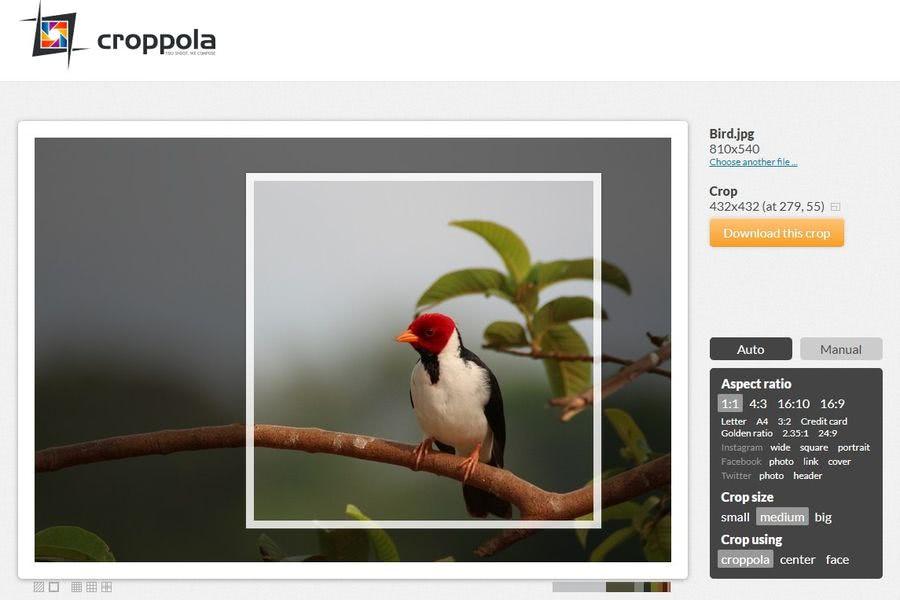 Croppola: aplicación web gratuita para recorte inteligente de imágenes