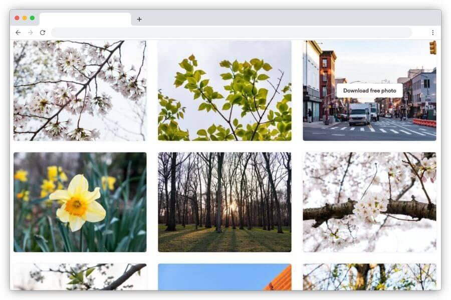 FOCA Stock: banco de imágenes y vídeos gratuitos para tus proyectos