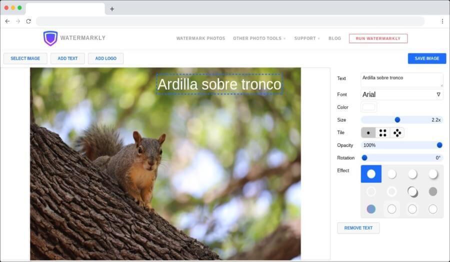 Añadir textos a fotos online y gratis con una sencilla herramienta web